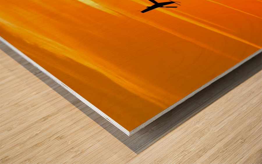 How the Wind Blew Down Wood print