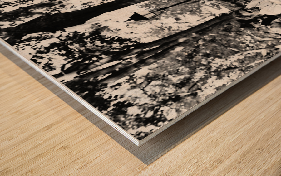 Tuning a New Generation Wood print