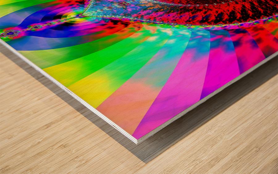 Paleta_De_Dios Wood print