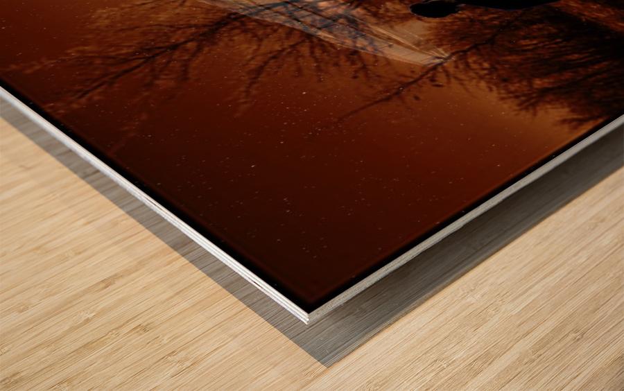 Dark Encounter Wood print