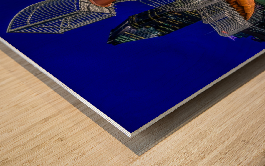 _TEL5194 HDR 1 2 Wood print