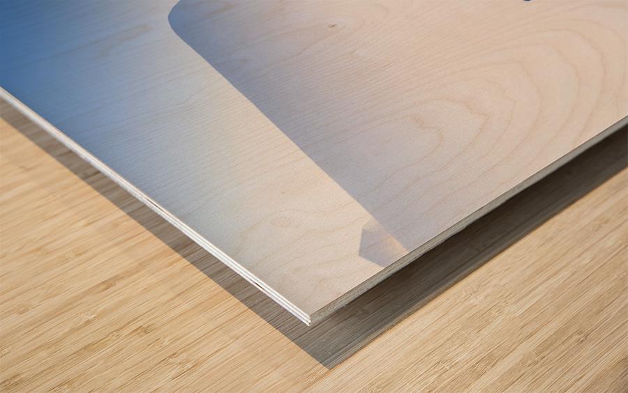 _TEL4429 Wood print