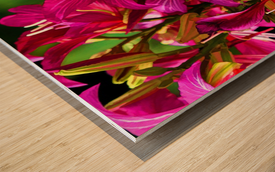 Hong Kong Orchid Wood print