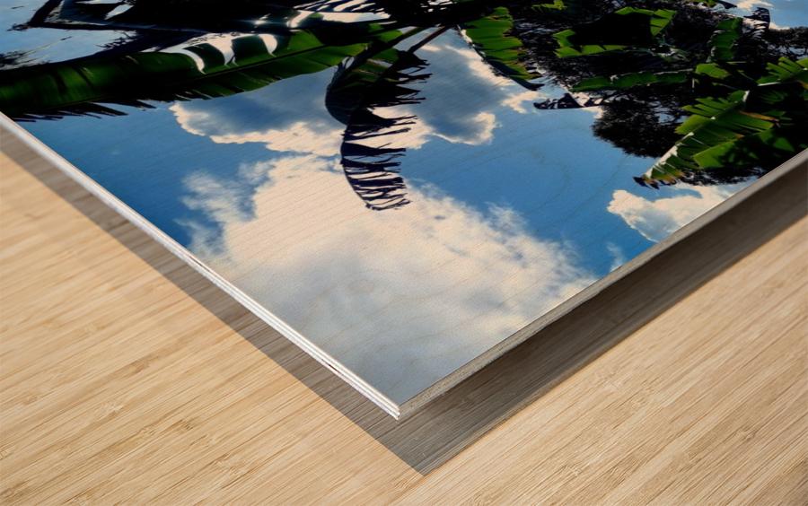 natural 3 Wood print