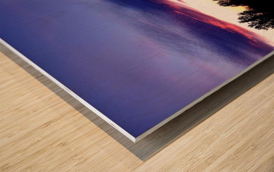 nube 48 Wood print