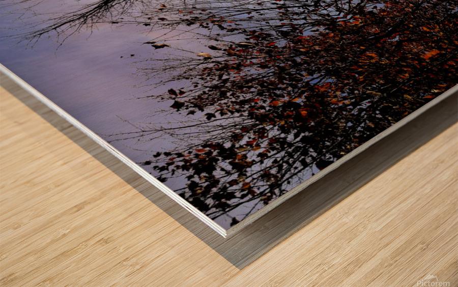 nube 57 Wood print