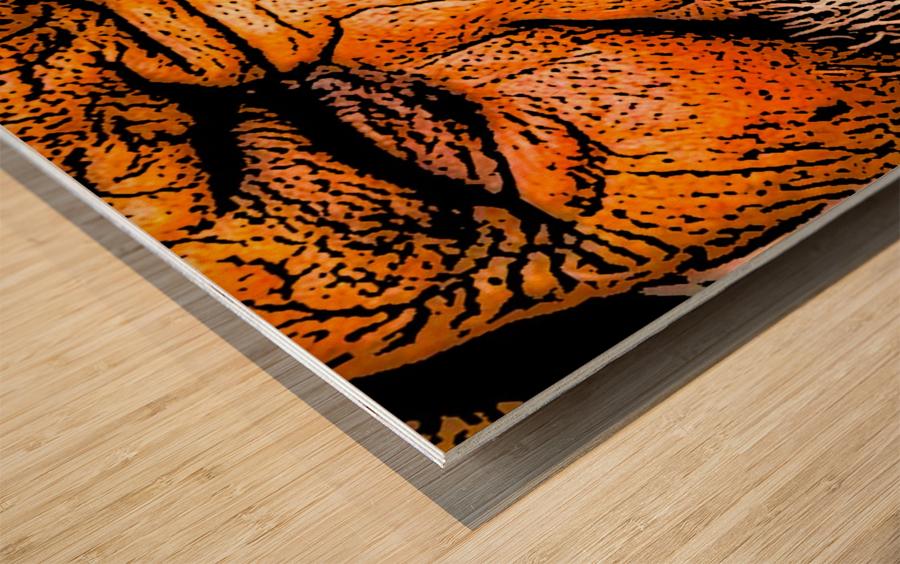 Squint Wood print