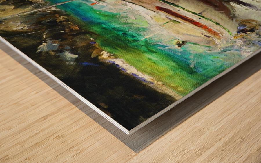 Panorama1 Wood print