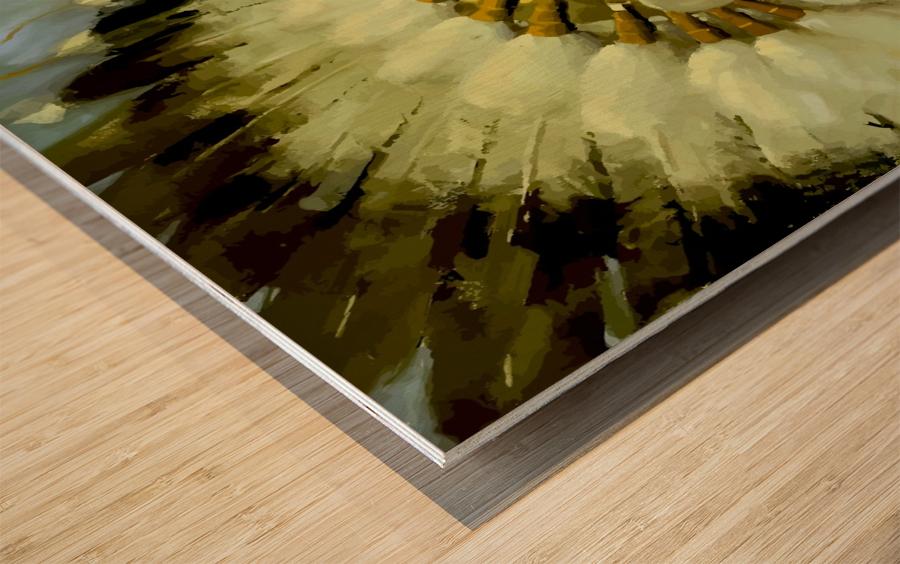 USA Santa Fe New Mexico USAEdited Wood print