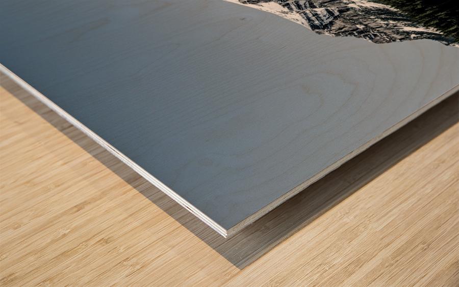 Lake Louise Reflection Wood print