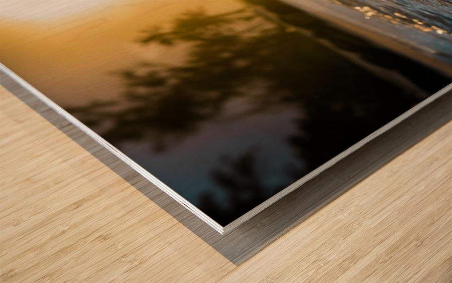 Glistening Waters Wood print