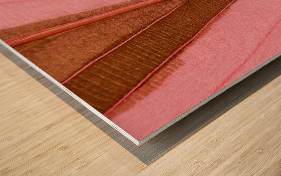 Macro Leaf Wood print
