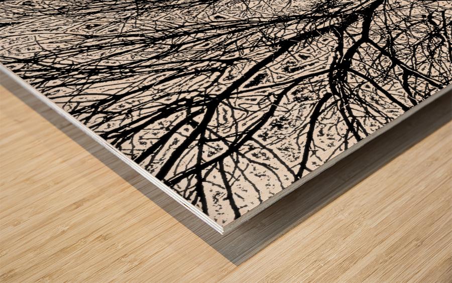 Afridaizy Black & White Trees Threshold029 Wood print