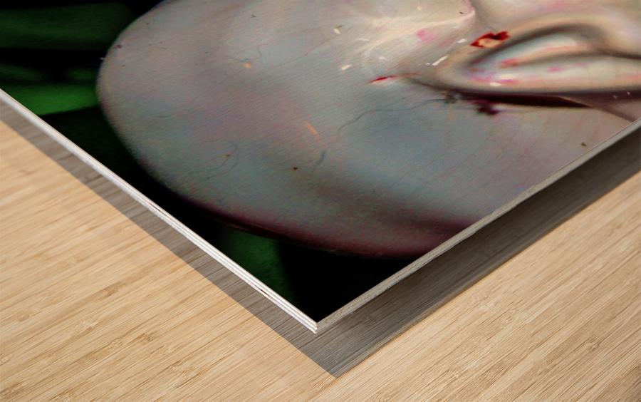 Gross Aroundings Wood print