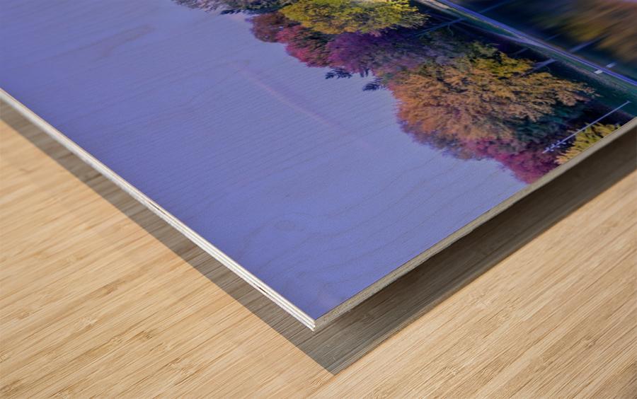 Beaver lake reflection Wood print