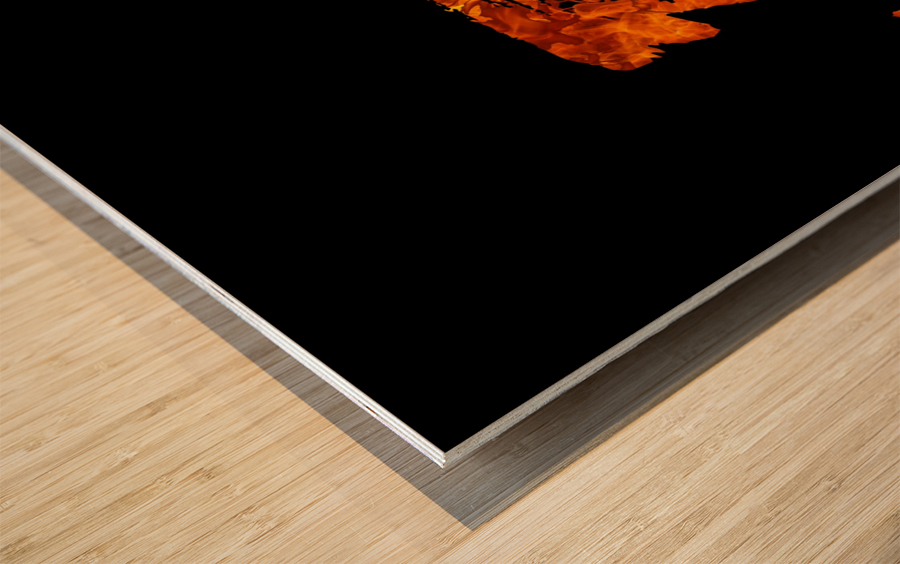 Burning on Fire Letter J Wood print