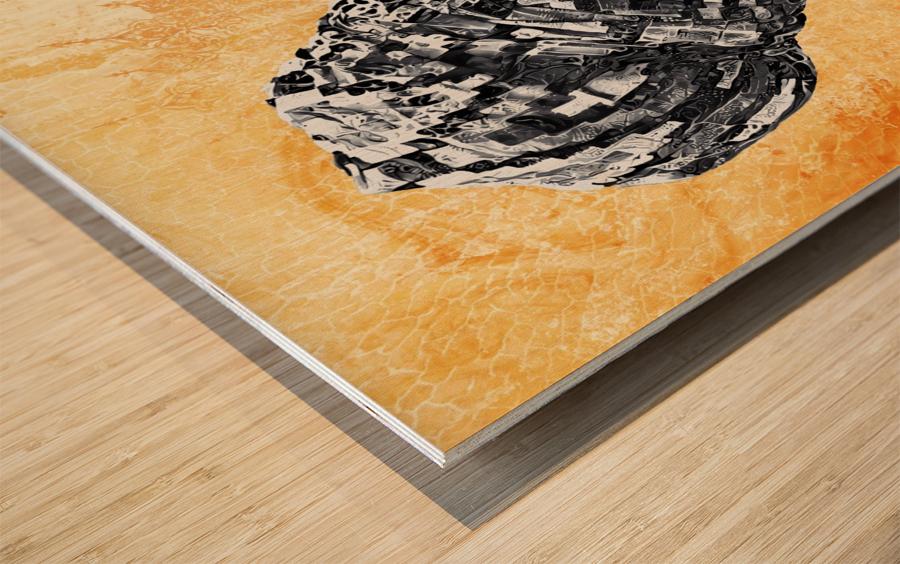 Color Through Culture II Wood print