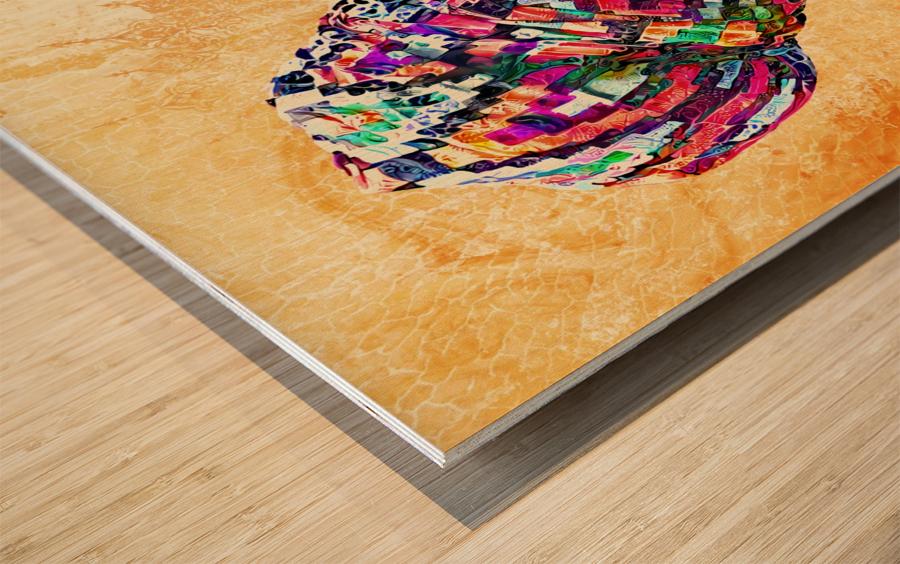 Color Through Culture I Wood print