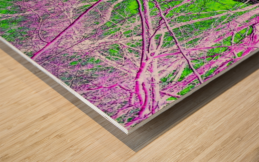 Tree on a Line Wood print