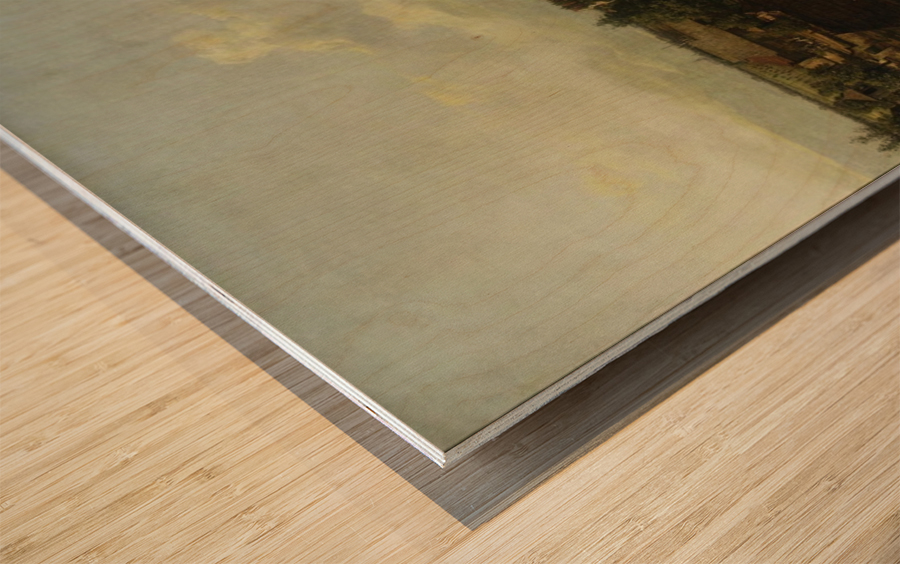 Ansicht kat Wood print
