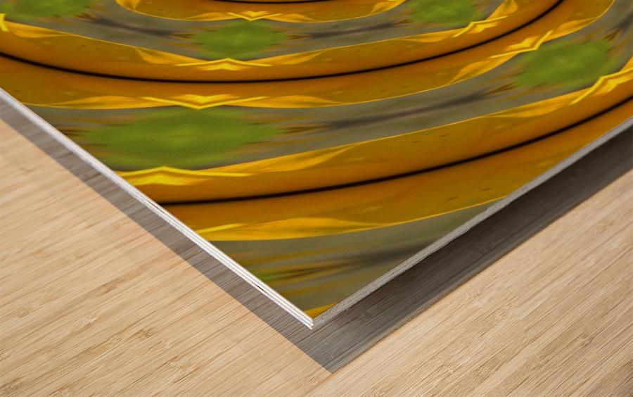 Sunflower G K1 Wood print
