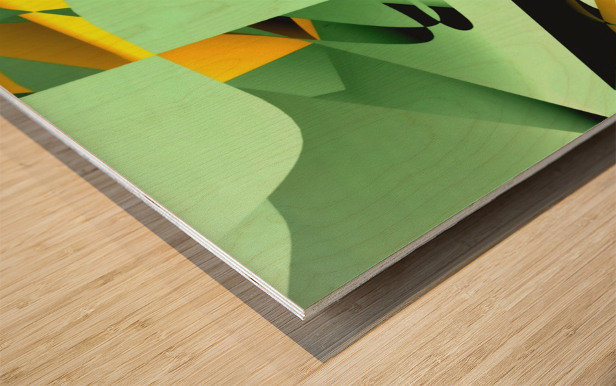 paper cutting 2005122028 Wood print