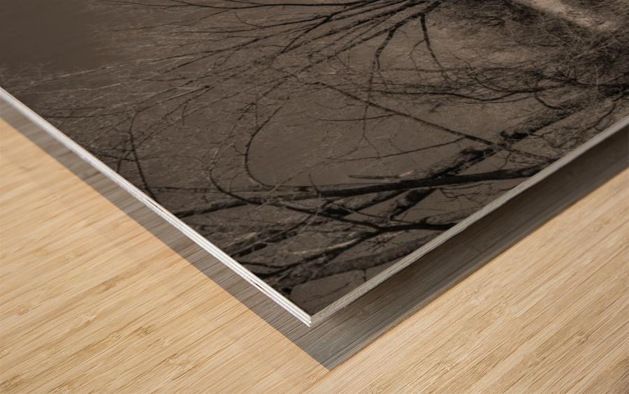Varennes Wood print