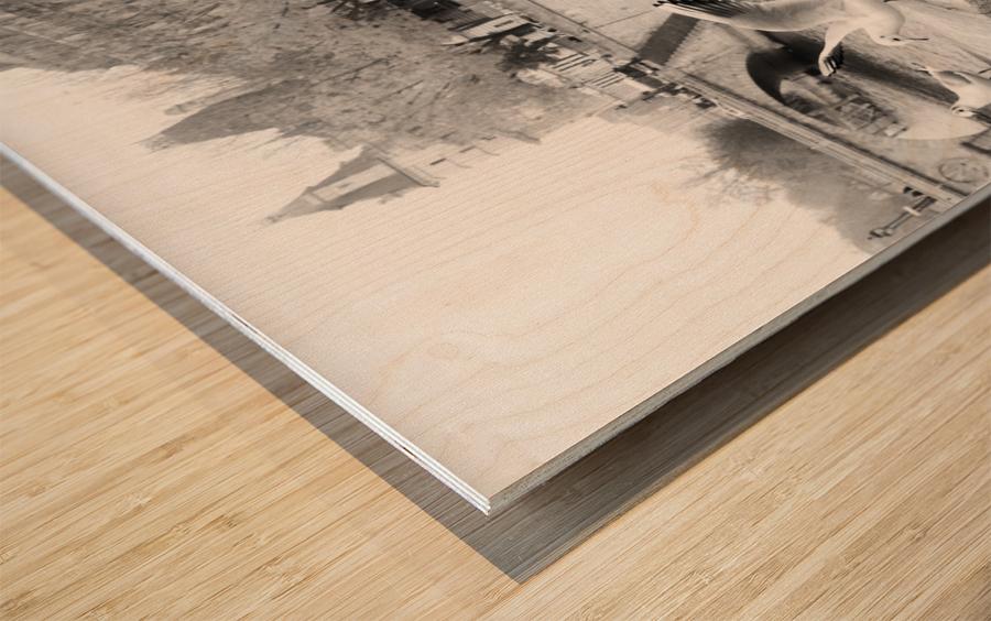 Les Oiseaux Wood print
