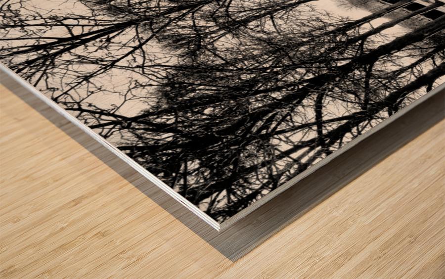 Reflection de la Nuit Wood print