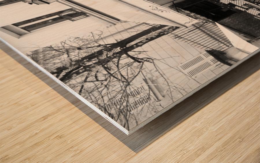 Les Abesses Wood print