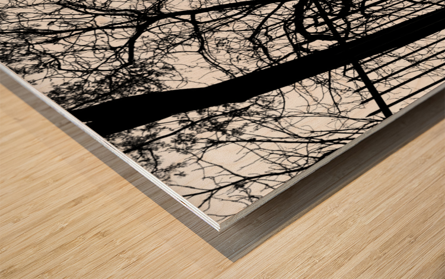 Pere Lachaise Wood print