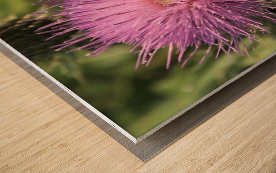 Final Approach Inbound Wood print