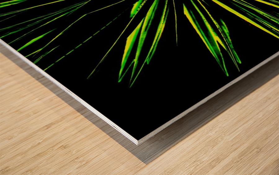Atchoo Wood print