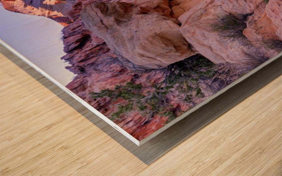Sunrise over Valley of Fire Wash - Nevada Wood print