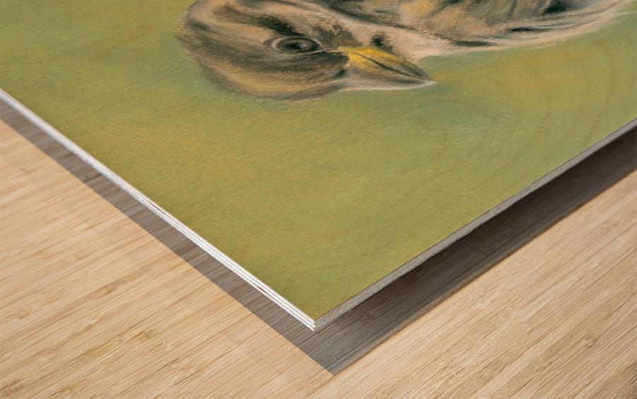 Sunny Sparrow Wood print