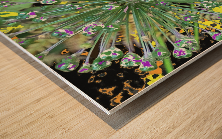 Alium with Purple Wood print