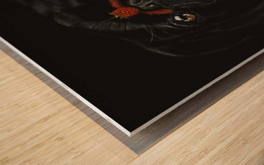 RASPBERRY PUG_COLOR PENCIL_51X69.30 Wood print