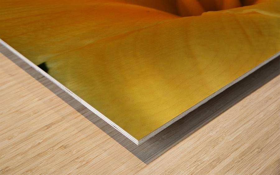 Pistil Wood print