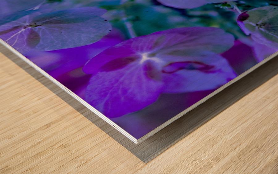 IMG_2616 Wood print