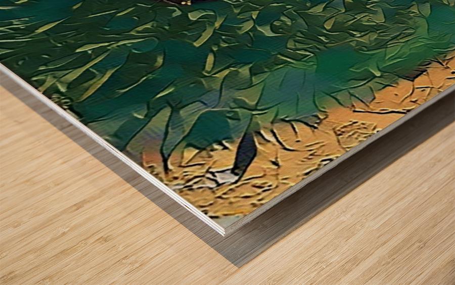 Designer brand Wood print