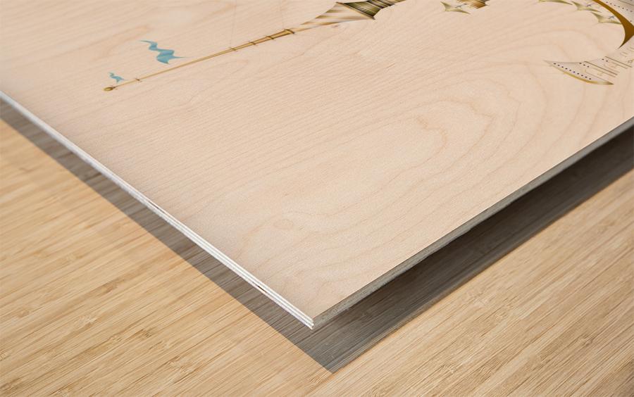 Gondolino Castellini Wood print