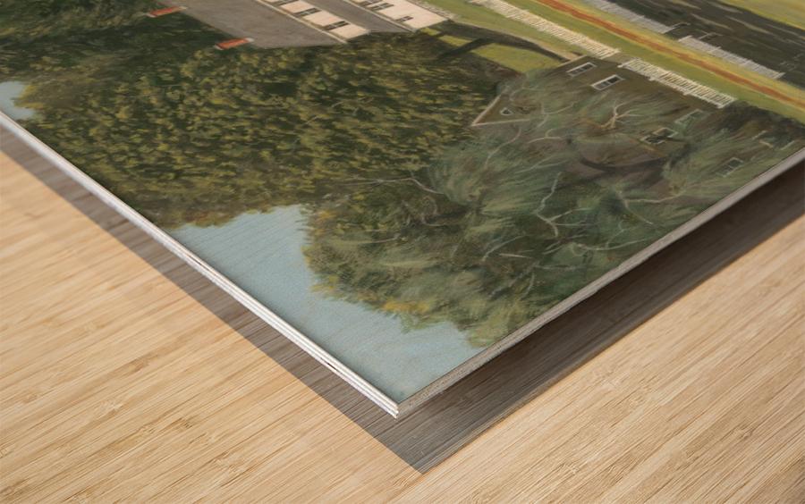 Geese at Hawley Pond - Newtown Series 16X20 Wood print