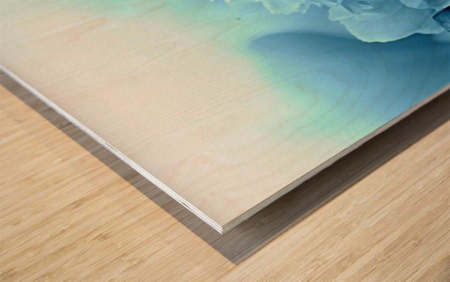 Heavenly Peony Aqua Blue Wood print