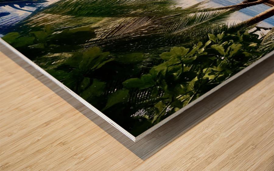 Sailboat And Palms Wood print