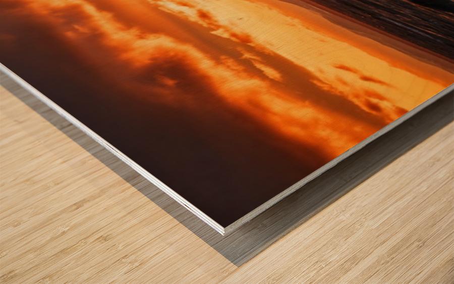 PNPG2989 Wood print