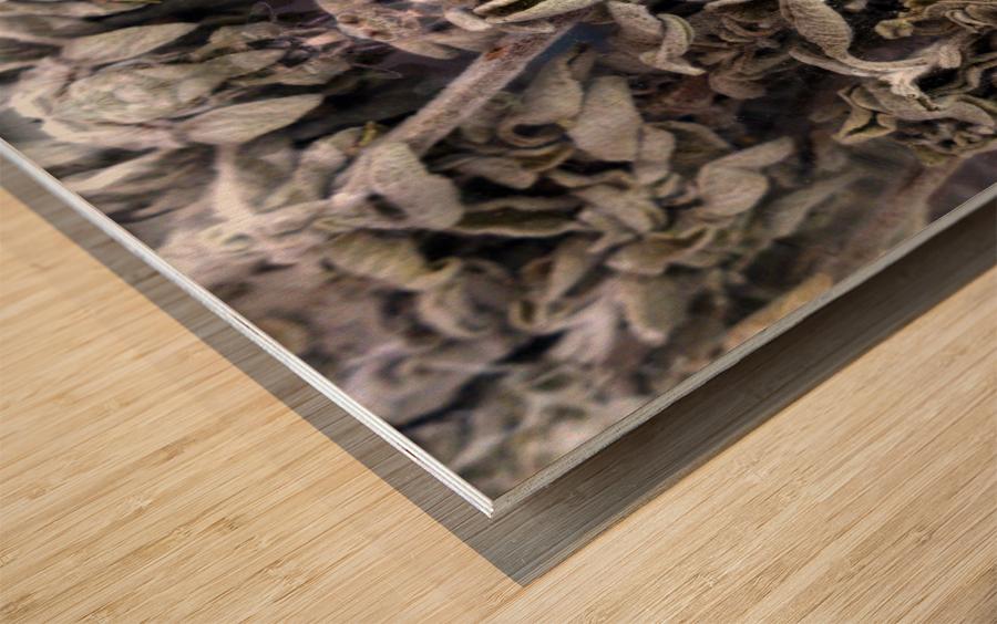 KUNG FU Wood print
