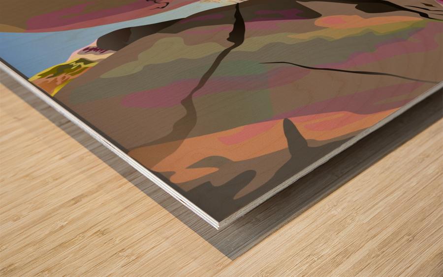 Box Canyon Wood print