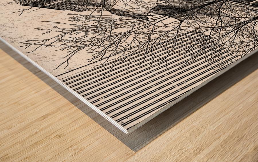 Millenium Park Chicago Wood print