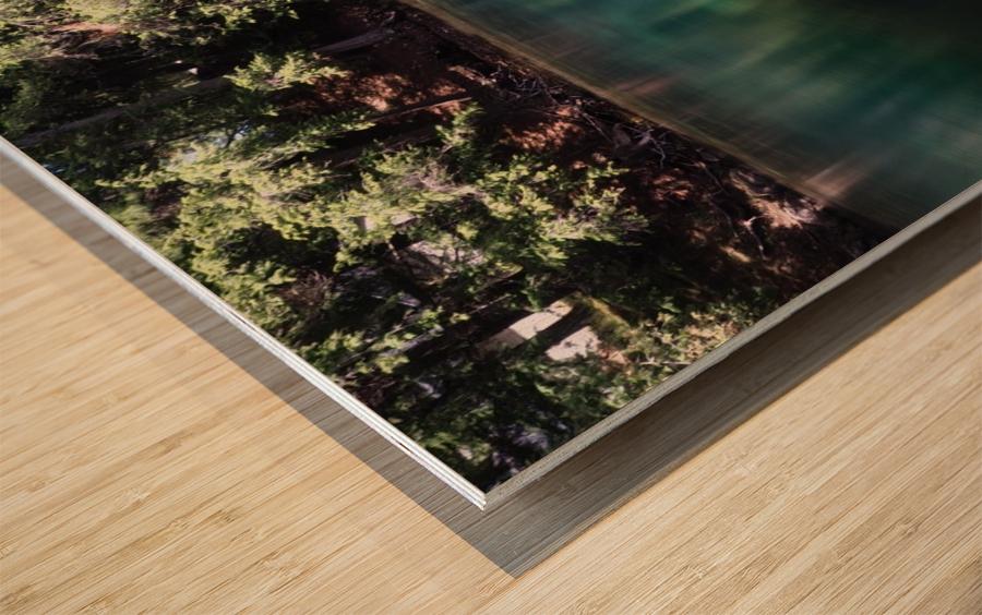 Saint Laurent Wood print