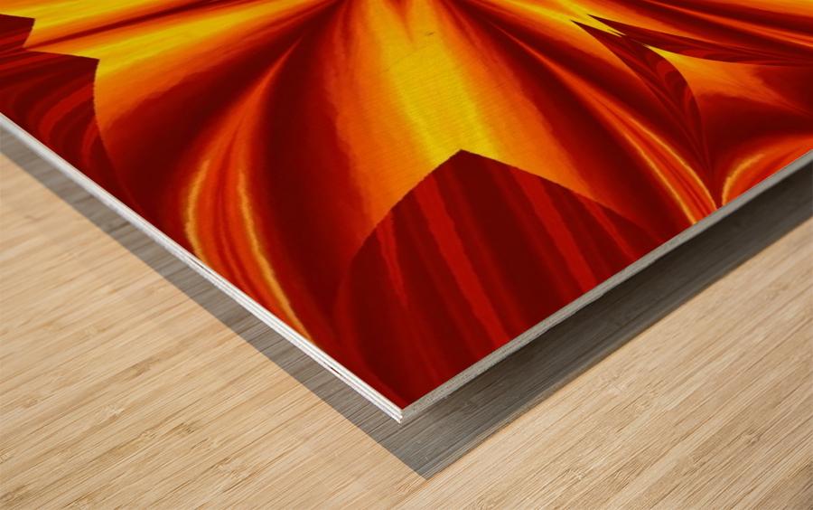 Fire Flowers 102 Wood print